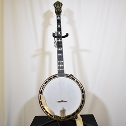 misc. ISS1813 Wildwood Banjo, Bluegrass Paragon, 5-String